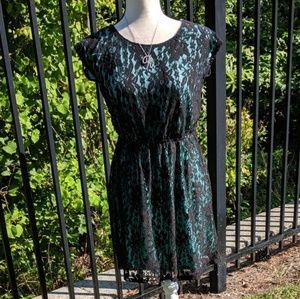 Aqua and black lace dress-NWOT!